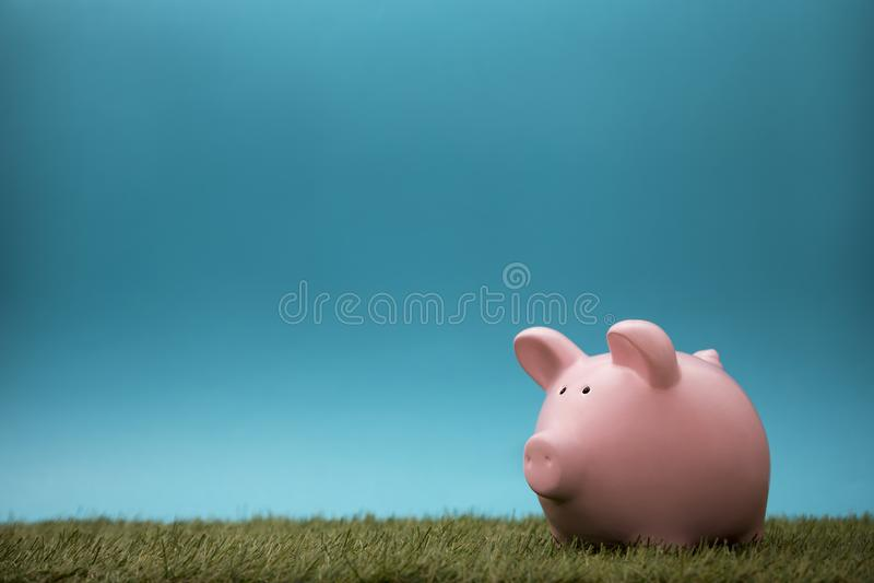 绿草和天空蔚蓝的存钱罐 免版税库存照片