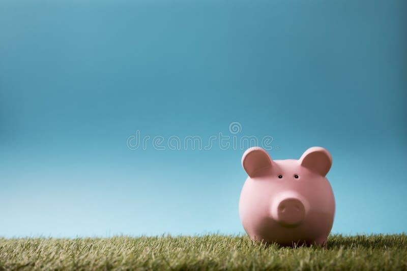 绿草和天空蔚蓝的存钱罐 免版税库存图片