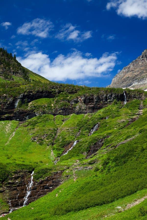 绿草和瀑布沿去太阳路在冰川国家公园 免版税图库摄影