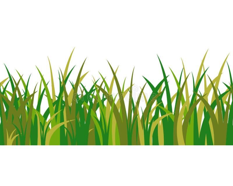 绿草在白色背景和无缝的样式隔绝的茎、一束 动画片风景的传染媒介例证 皇族释放例证