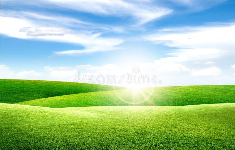 绿草自然草甸领域和小的小山美好的风景视图与白色云彩和天空蔚蓝 免版税库存照片