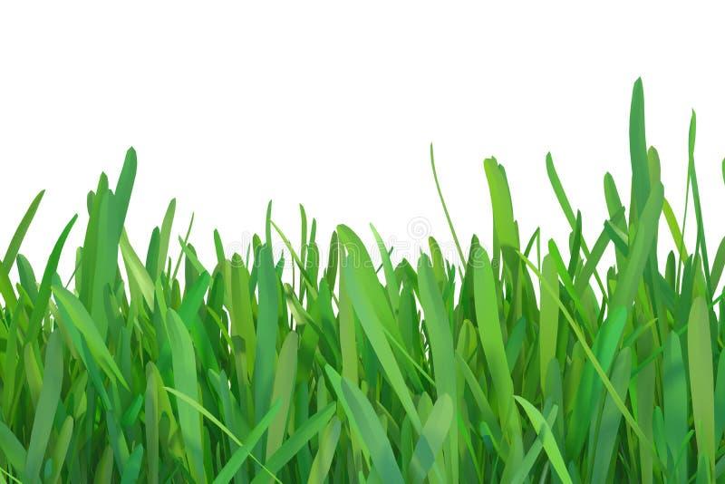 绿草自然 植物草坪 3d翻译自然本底 皇族释放例证