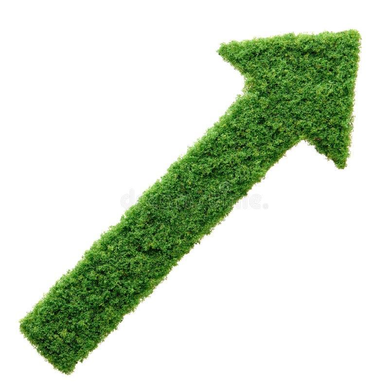 绿草被隔绝的eco箭头 皇族释放例证