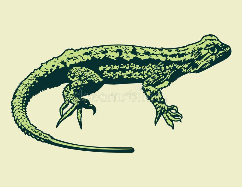 绿蜥蜴传染媒介动画片图表 库存例证