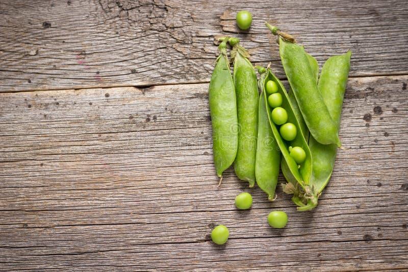 绿豆新鲜的荚 库存照片