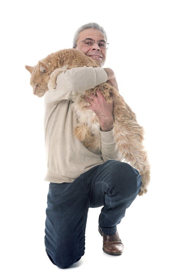 缅因树狸猫和人 免版税库存照片