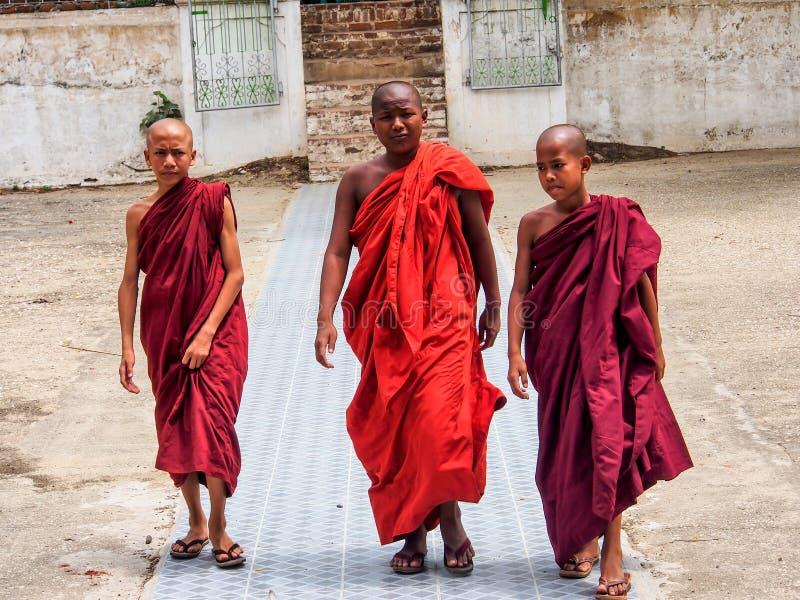 缅甸新手男孩在曼德勒,缅甸 库存图片