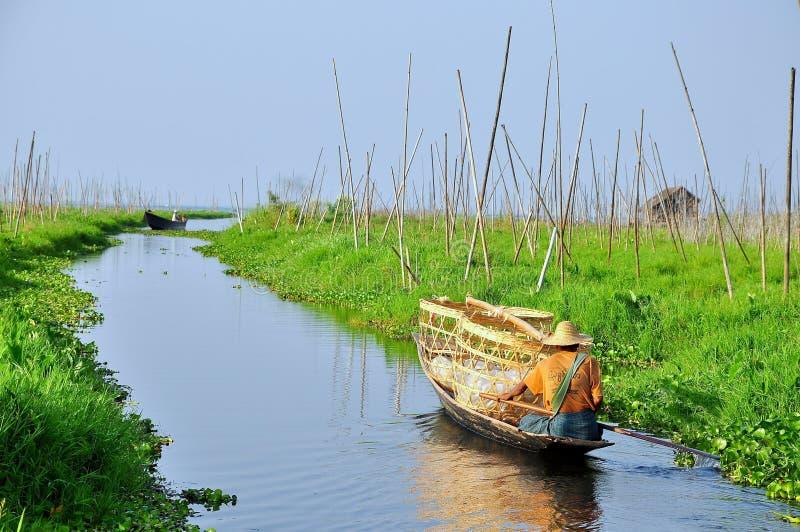 缅甸的浮动庭院 库存照片