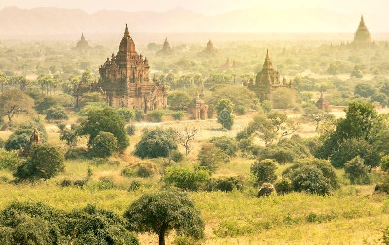 缅甸的- Bagan谷鸟瞰图古老塔  免版税库存照片