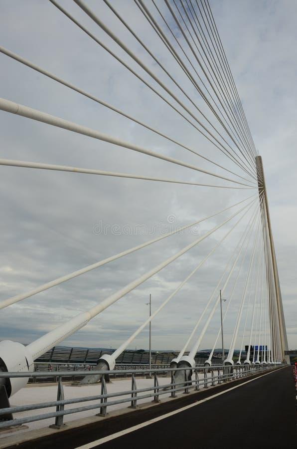 缆绳逗留桥梁 库存照片