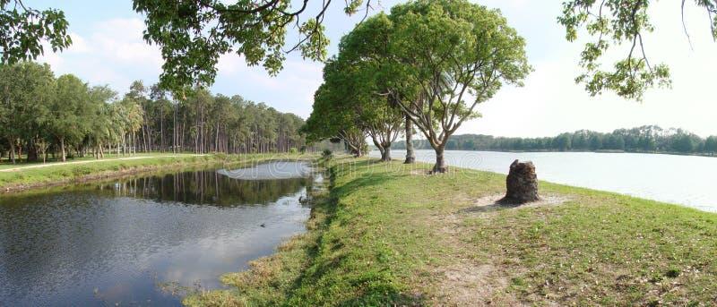 缓慢地佛罗里达湖泰勒 库存照片