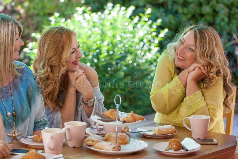 编组见面为咖啡和蛋糕的妇女朋友 免版税库存照片