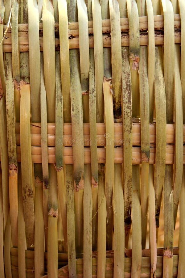 编织品藤茎手工造植物墨西哥的纹理 免版税库存图片