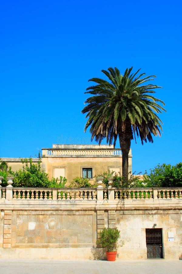 编译的有历史的意大利棕榈树 免版税库存照片