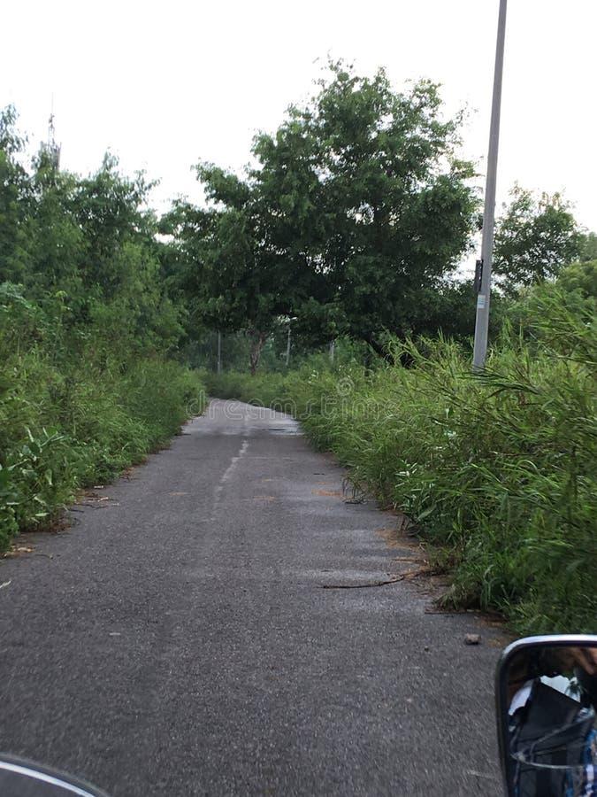 缩小的街道 免版税库存照片