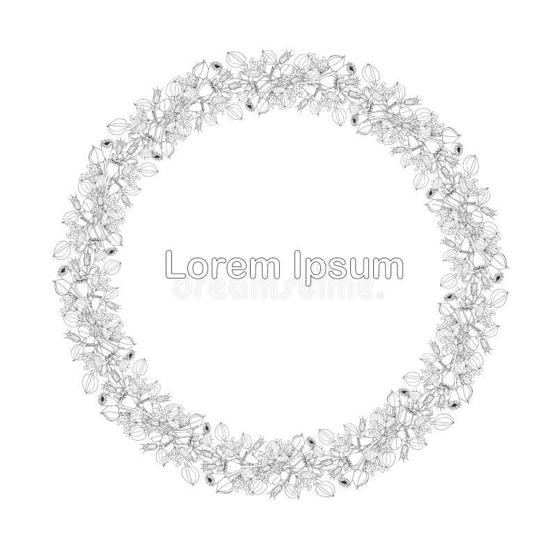 罂粟属aquilegia lila果子圆的边界,Lorem Ipsum单色图表手拉的设计元素股票 库存例证
