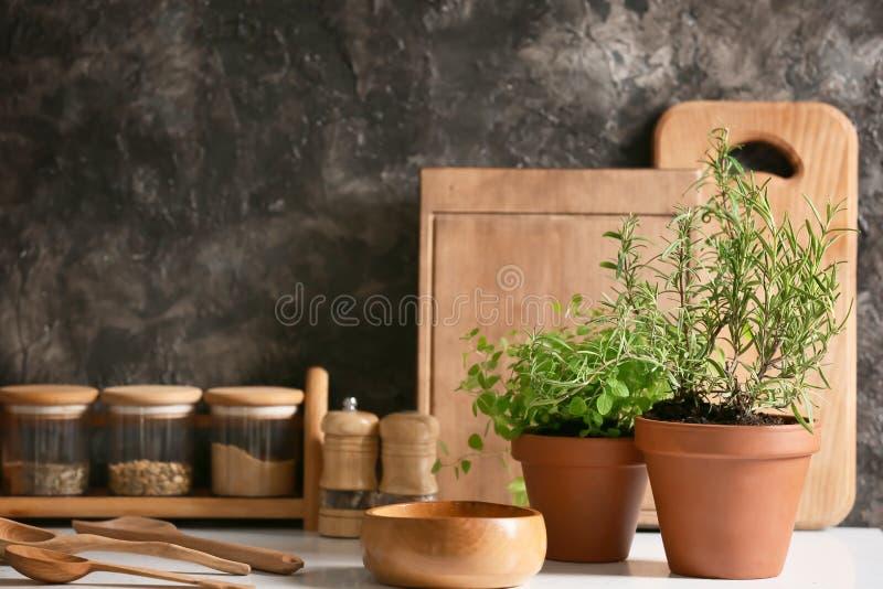 罐用新鲜的芳香草本和香料在轻的桌上 免版税库存图片