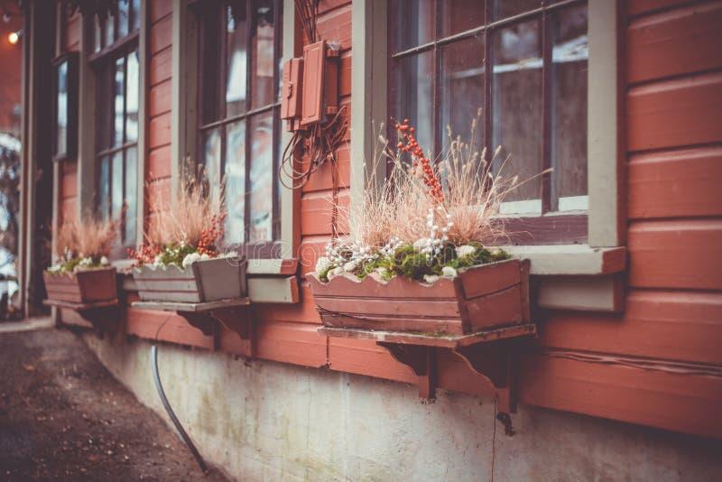 罐的植物在从大厦外面的窗台 免版税库存图片