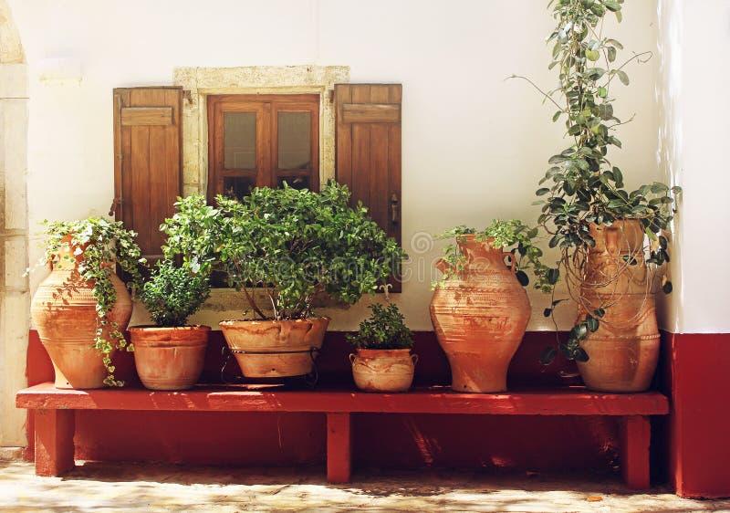 罐的植物在织地不很细墙壁附近的一条长凳有窗口的,希腊,克利特 库存照片