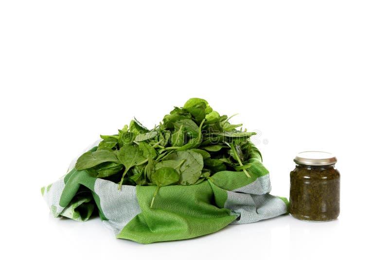 罐装新鲜的菠菜与 免版税库存照片