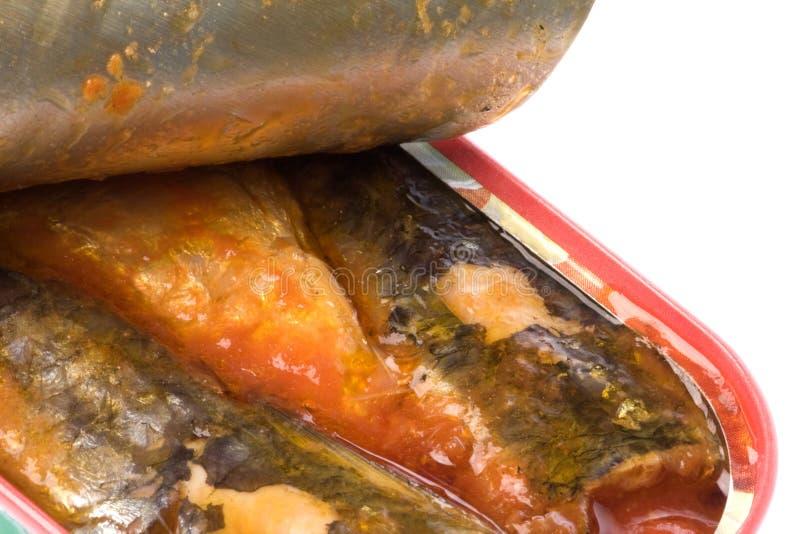 罐装查出的沙丁鱼 免版税库存照片