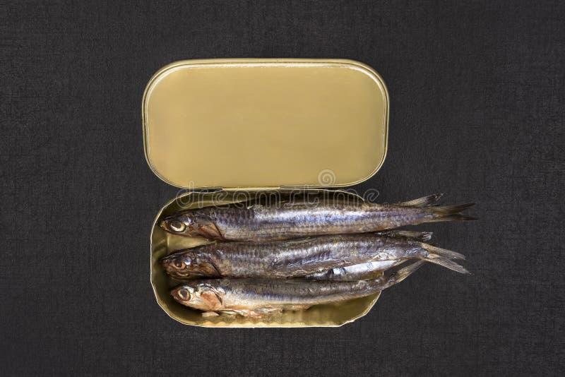 罐装沙丁鱼 免版税库存照片