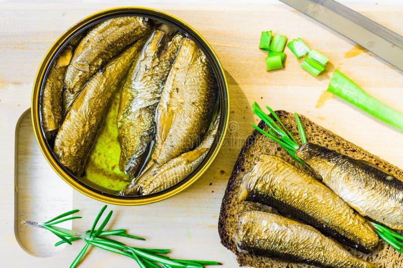 罐装熏制的西鲱或沙丁鱼 免版税库存图片