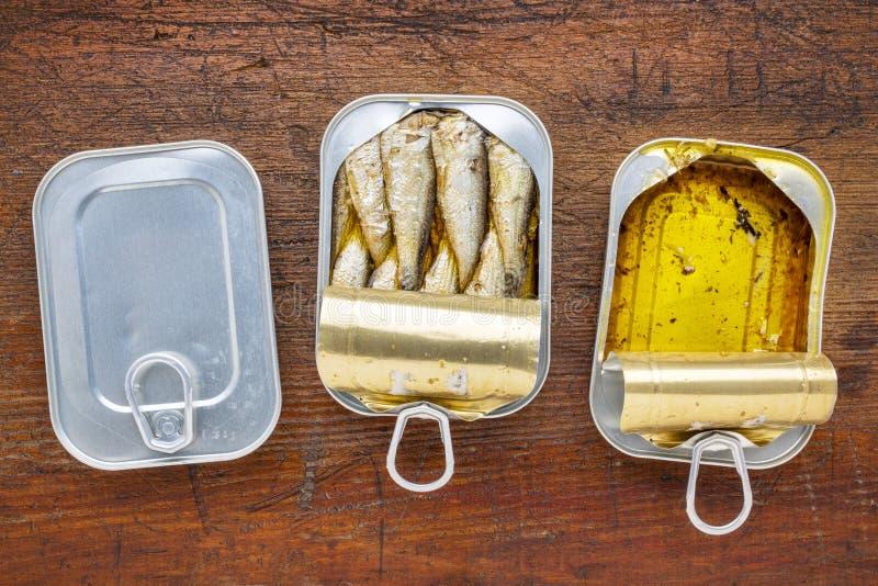 罐装的小鲱鱼沙丁鱼 库存照片