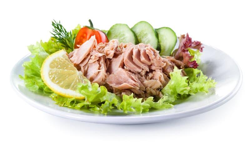 罐装金枪鱼用菜沙拉 库存照片