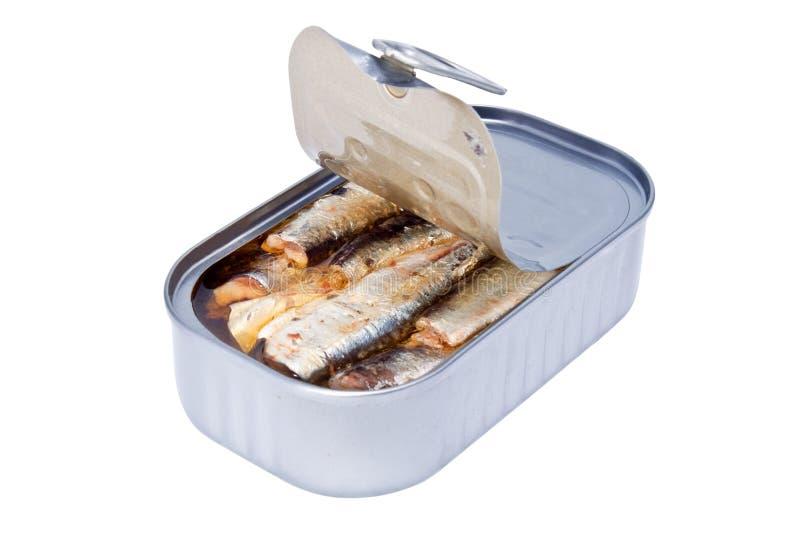 罐装鱼食物 库存图片