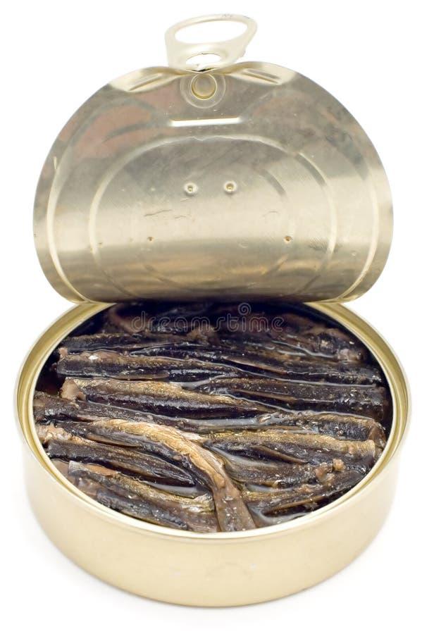 罐装鱼 图库摄影