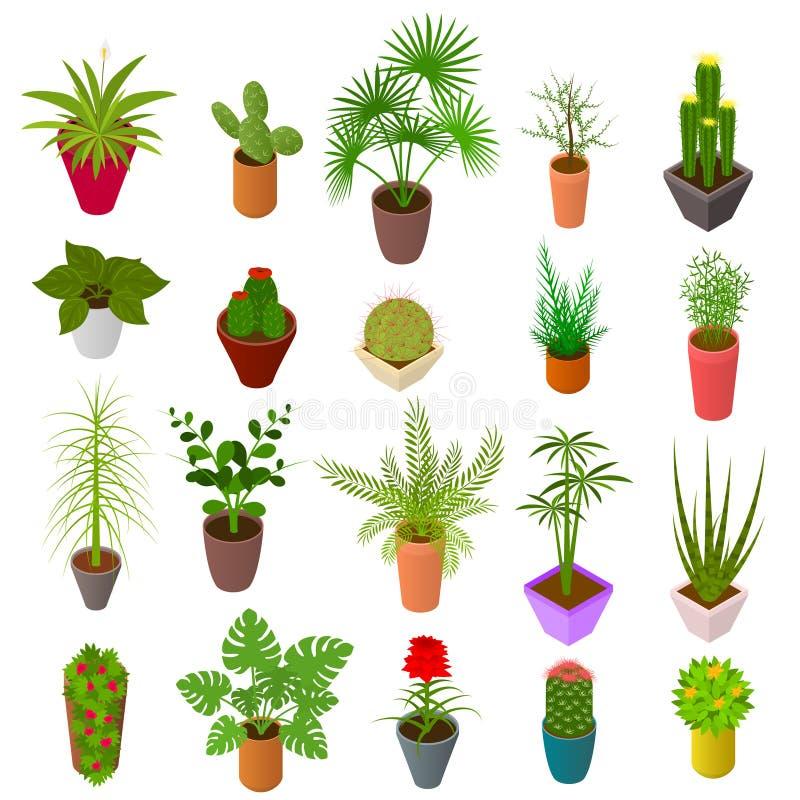 罐集合象3d等轴测图的绿色植物 向量 皇族释放例证