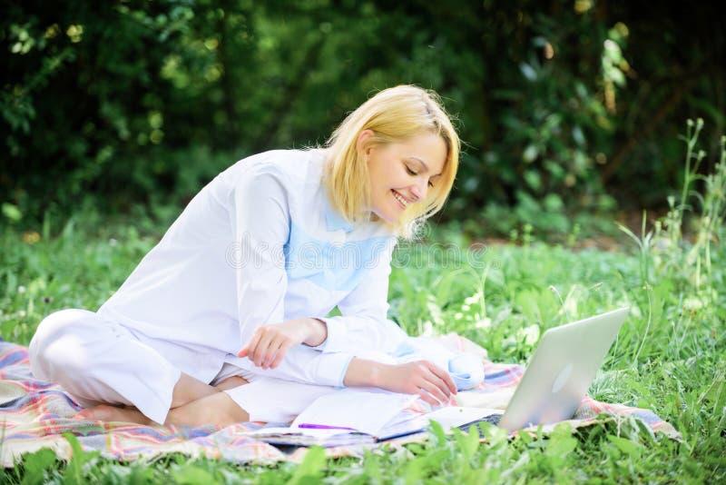 网上企业想法概念 企业野餐概念 开始做自由职业者的事务的步 企业夫人自由职业者 库存照片