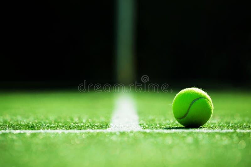 网球软的焦点在网球草地网球场的 库存照片