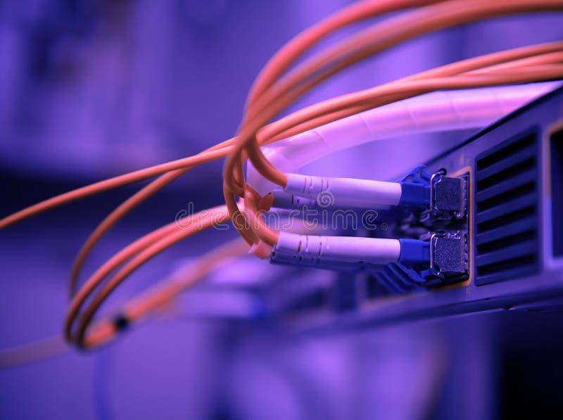 网络光纤缆绳和插孔 库存图片