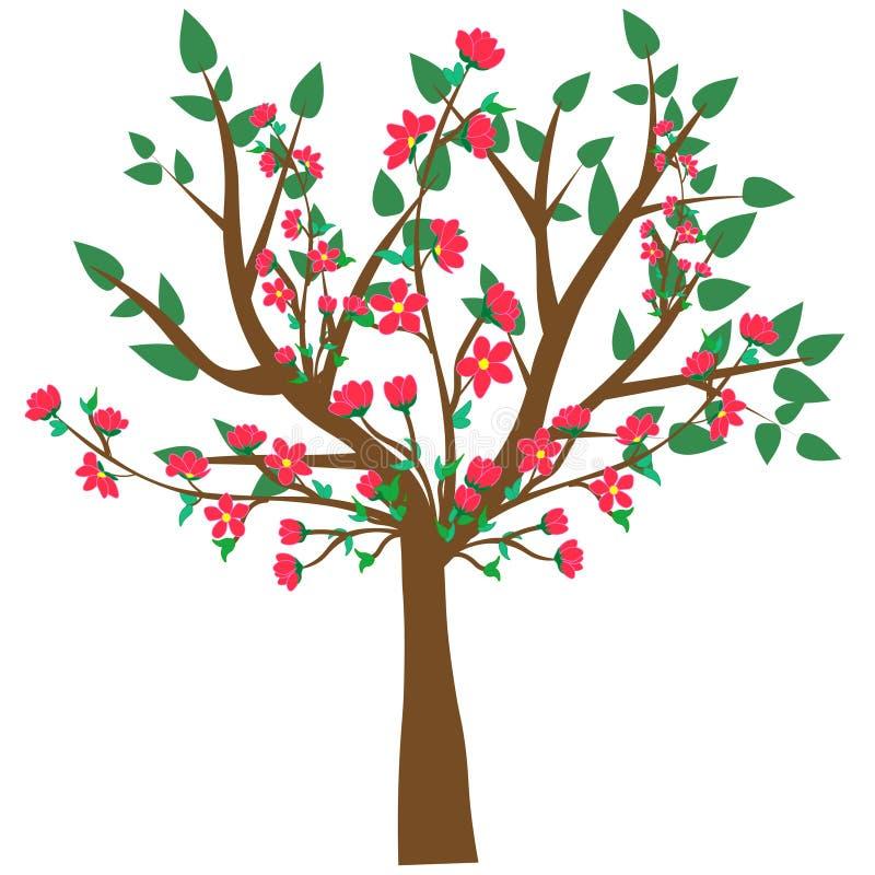 网 在白色背景隔绝的一棵抽象开花的樱桃树的传染媒介例证 皇族释放例证