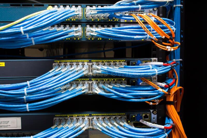 网络缆绳和开关 免版税库存图片