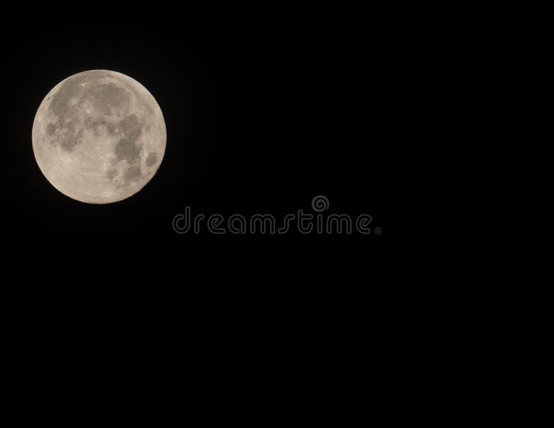 罕见的超级名门出身月亮8 5x11 免版税库存图片