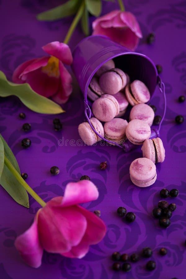 紫罗兰色蛋白杏仁饼干 免版税图库摄影