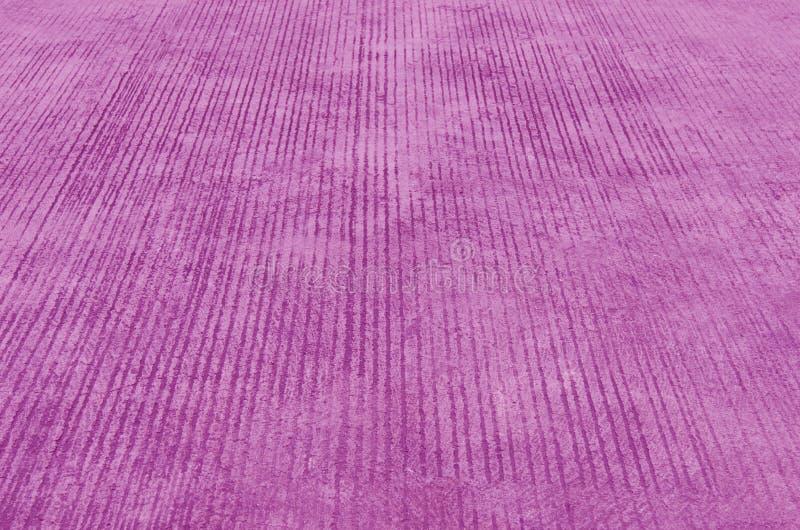 紫罗兰色边路 免版税库存照片