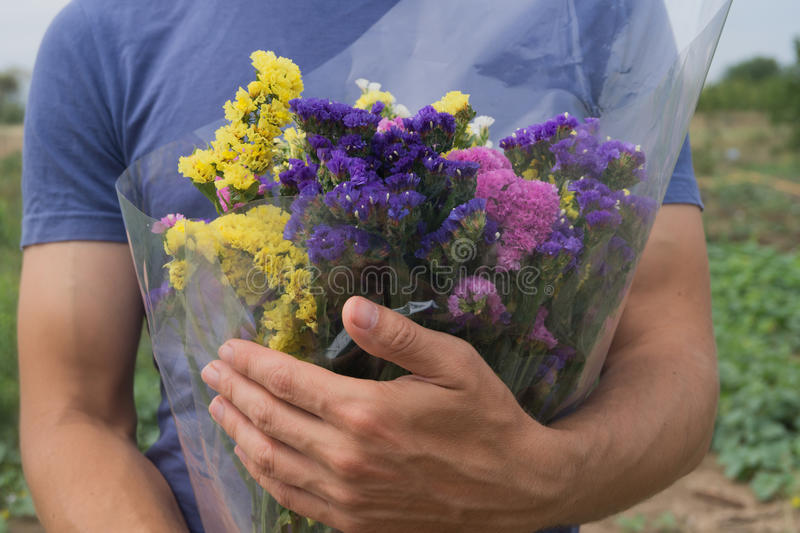 紫罗兰色,黄色,桃红色和白色statis花束在人` s手上 库存图片