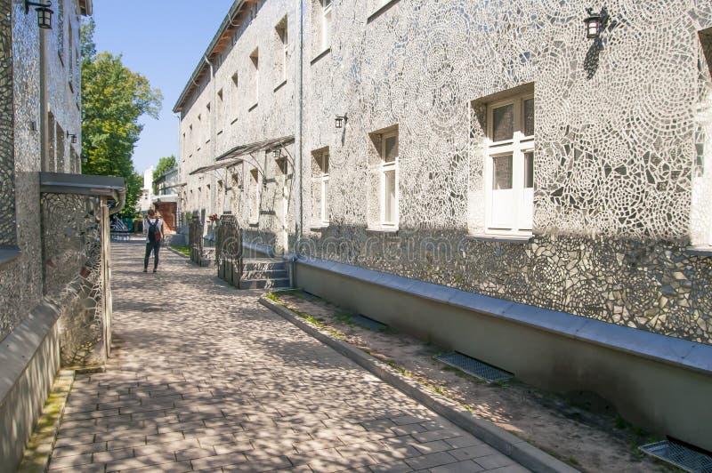 罗兹,波兰,2018年7月 Pasaz rozy罗莎的段落由乔安娜Rajkowska做了, 库存照片
