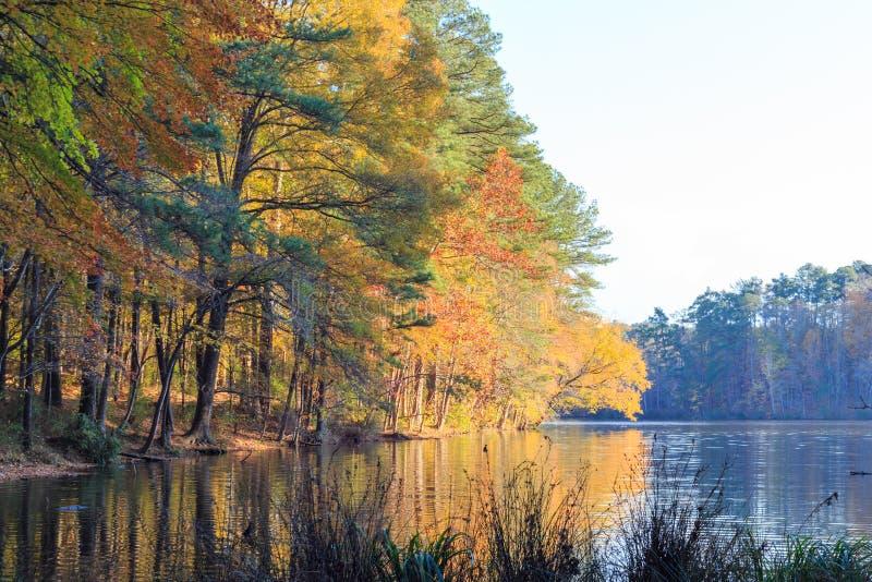 罗利的,在秋季期间的NC湖约翰逊 库存照片