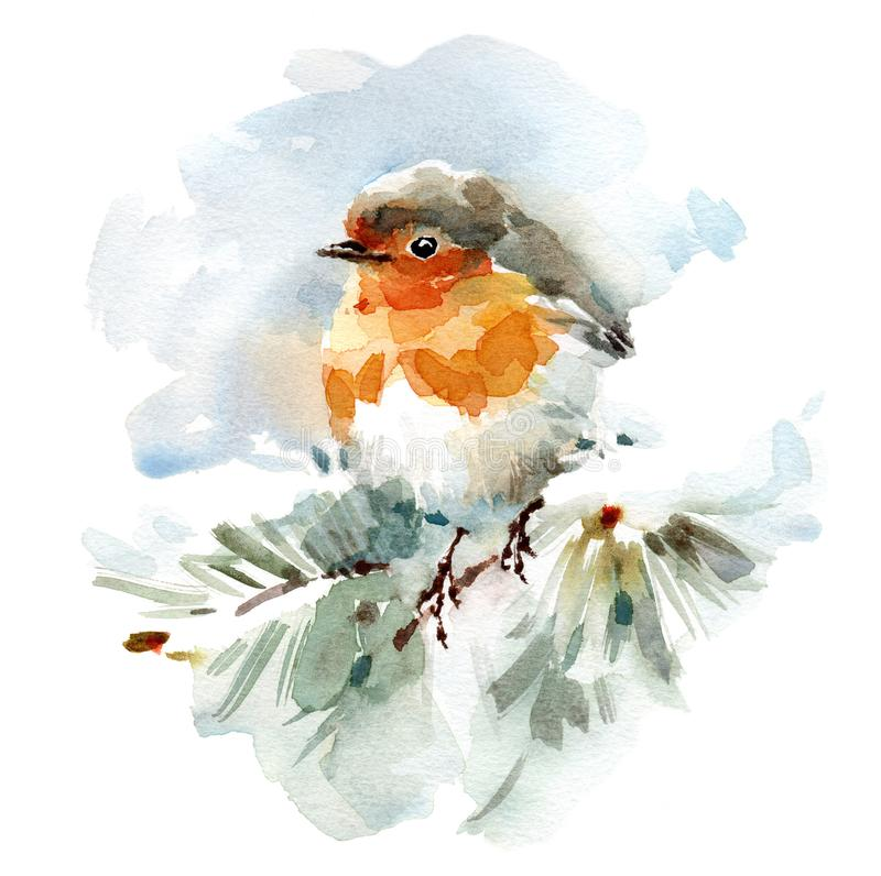 罗宾鸟坐手拉多雪的分支水彩冬天的例证 库存例证