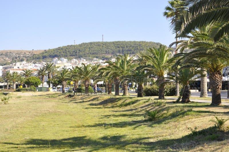 罗希姆诺,9月1th日:有棕榈树的城市街道从克利特罗希姆诺在希腊 免版税库存照片