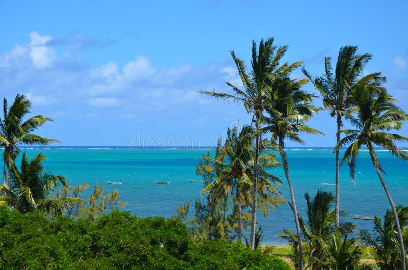 罗得里格斯岛异乎寻常的风景  免版税库存图片