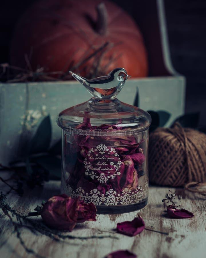 罗斯发芽茶、滤茶器和玻璃瓶子 选择聚焦 库存照片