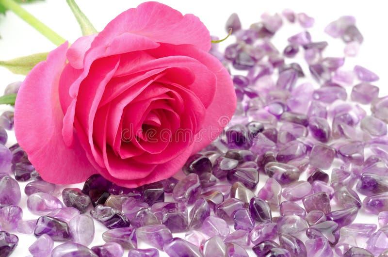 罗斯和紫晶 免版税库存照片