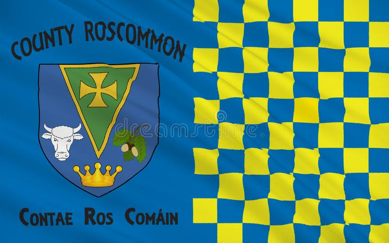 罗斯康芒郡旗子是一个县在爱尔兰 向量例证
