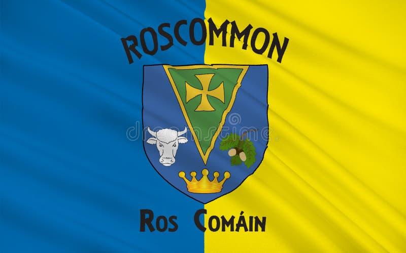罗斯康芒郡旗子是一个县在爱尔兰 皇族释放例证